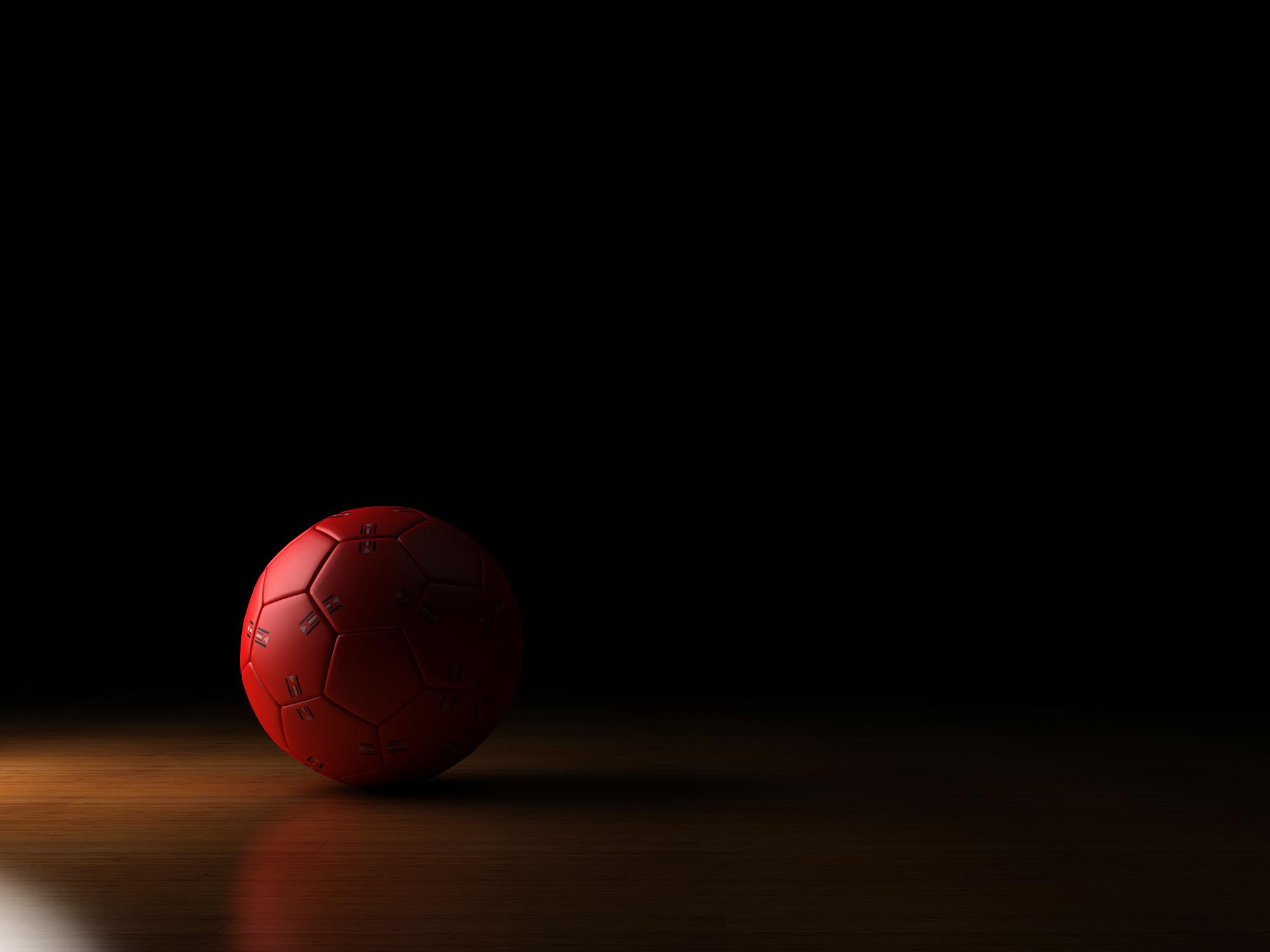 Handbalclub Elita Lebbeke-Buggenhout stopt onmiddellijk al zijn sportactiviteiten tot 16 november.